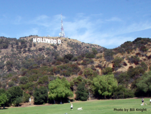 The Dog Park at Old Hollywoodland Photo by Bill Knight