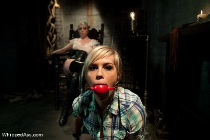 The ball gag and Lorelei Lee waiting in the background. Photo courtesy of Kink.com
